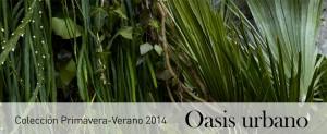 Nueva colección primavera-verano 2014